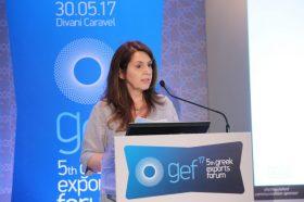 Ομιλία: Μαργαρίτα Γκολφινοπούλου, Διευθύντρια Επιχειρηματικών Κινδύνων, Risk Champion, AIG Greece